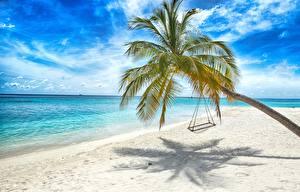 Hintergrundbilder Meer Tropen Palmen Strand Schaukel Natur