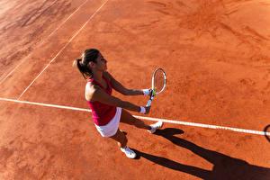 Hintergrundbilder Tennis Braunhaarige Trainieren Mädchens Sport
