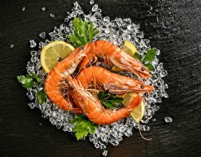 Picture Shrimp Ice Food