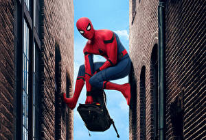 Wallpapers Spider-Man: Homecoming Superheroes Spiderman hero Movies