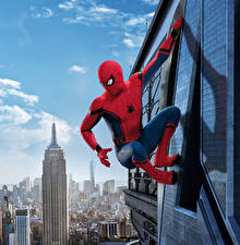 Spiderman Heros Fonds D Ecran Gratuits 104 Photo