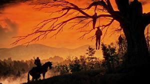 Picture The Witcher 3: Wild Hunt Dead Cadaver Corpse Trees Branches Games