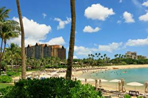 Hintergrundbilder Tropen Resort Haus Vereinigte Staaten Hawaii Strände Baumstamm Honolulu Städte
