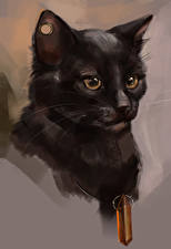 Fotos Katze Gezeichnet Kopf Starren