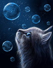 Hintergrundbilder Katze Gezeichnet Kopf Seifenblasen Tiere