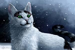 Hintergrundbilder Katzen Gezeichnet Nacht Blick