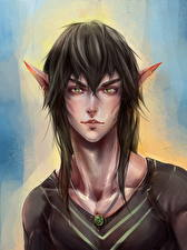 Pictures Elf Man Young man Fantasy