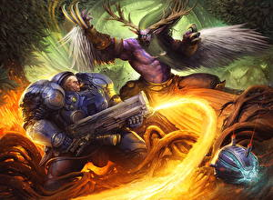 Images Heroes of the Storm World of WarCraft StarCraft Battles Warriors Archdruid, Tychus, Malfurion vdeo game Fantasy