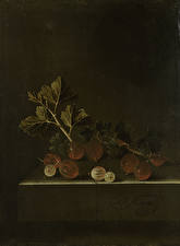 Hintergrundbilder Malerei Stachelbeere Adriaen Coorte, A Sprig of Gooseberries on a Stone Plinth