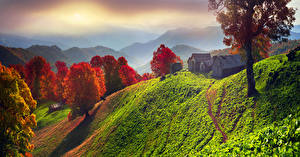 Bilder Ukraine Gebäude Herbst Landschaftsfotografie Transkarpatien Hügel Bäume
