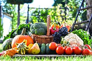 Wallpaper Vegetables Fruit Grapes Pears Pumpkin Tomatoes Wicker basket
