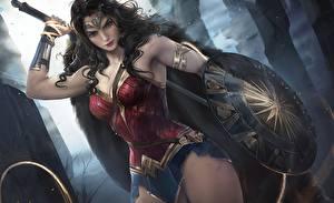 Pictures Wonder Woman hero Warrior Beautiful Shield by sakimi-chan Fantasy Girls