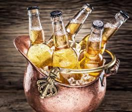 Fotos Bier Getränke Flasche Eis Lebensmittel