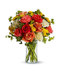 Papel de Parede Desktop Buquê Rosas Dianthus Crisântemos Fundo branco Vaso Flores