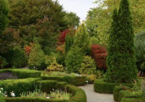Images Canada Gardens Toronto Spruce Trees Bush Botanical Gardens Nature