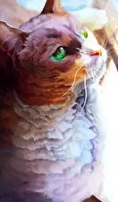 Hintergrundbilder Hauskatze Gezeichnet ein Tier