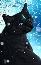 Hintergrundbilder Katze Gezeichnet Schneeflocken Schwarz