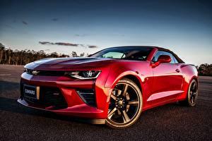 Bilder Chevrolet Rot Camaro Autos