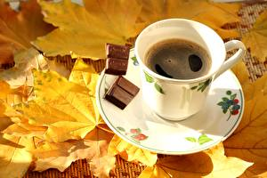 Wallpapers Coffee Chocolate Cup Saucer Leaf Food