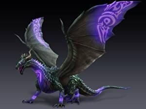 Hintergrundbilder Drache Bladestorm Flügel Spiele 3D-Grafik Fantasy