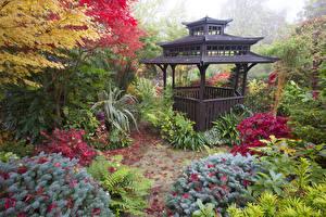 壁纸、、イングランド、ガーデン、パゴダ、秋、低木、Walsall Garden、自然