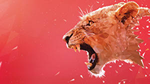 Pictures Lion Big cats Canine tooth fangs Painting Art Angry Head Animals