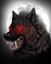 Fotos Ungeheuer Eckzahn Werwolf Grinsen Nacht Mond
