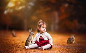 Bilder Kaninchen Kleine Mädchen Sitzen kind