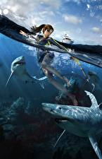 Pictures Tomb Raider Underworld Water Sharks Lara Croft Games Girls