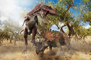 Fonds d'écran Anciens animaux Dinosaure Rictus Albertosaurus vs Regaliceratops un animal 3D_Graphiques