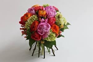 Fondos de escritorio Ramos Rosa Ranunculus Hydrangea Fondo gris Flores