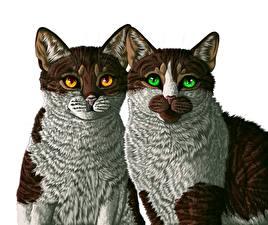 Bilder Katze Gezeichnet 2 Weißer hintergrund