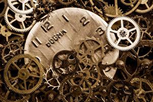 Bilder Uhr Nahaufnahme Mechanik Zahnrad