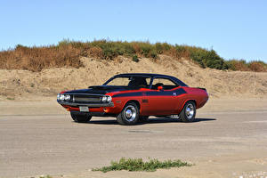 Photo Dodge Vintage Tuning Red 1970 Challenger T-A 340 Six Pack automobile