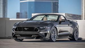 Hintergrundbilder Ford Grau Cabrio Speedkore Mustang GT Convertible auto