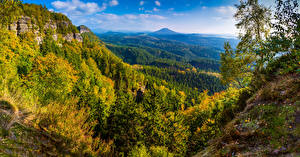 Wallpaper Germany Parks Autumn Scenery Forest Hill Saxon Switzerland National Park Nature