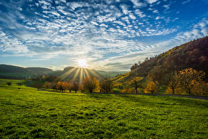 Wallpaper Germany Scenery Sunrises and sunsets Sky Autumn Clouds Sun Trees Grass Olsberg Nature