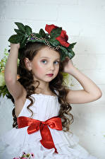 Pictures Gray background Little girls Model Brown haired Hands Bow Glance Beautiful Children