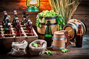 Pictures Hops Beer Cask Bottle Ear botany Food