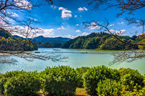 壁纸、、日本、湖、山、低木、枝、Lake Shorenji Nabari、自然