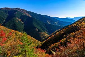 壁纸、、日本、公園、山、秋、Nara Park、自然