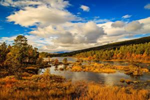 Fotos Norwegen Herbst Himmel See Wälder Wolke Natur
