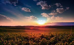 Fotos Landschaftsfotografie Sonnenaufgänge und Sonnenuntergänge Himmel Felder Wolke Natur
