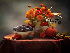 Image Still-life Bouquet Tagetes Pumpkin Plums Rowan Flowers Food