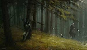 Fotos The Witcher Elfen Geralt von Rivia Bogenschütze Mann Dryad Spiele Fantasy Mädchens