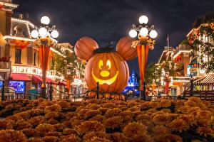Picture USA Disneyland Park Halloween Building Pumpkin Chrysanths California Anaheim Design Street lights Night time Cities