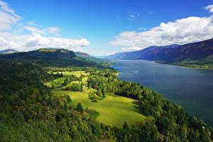 Hintergrundbilder Vereinigte Staaten Landschaftsfotografie Flusse Wälder Himmel Grünland Hügel Columbia River Gorge Natur