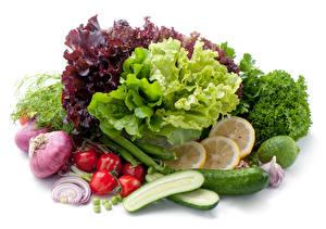 Bilder Gemüse Tomate Gurke Zwiebel Knoblauch Weißer hintergrund Lebensmittel
