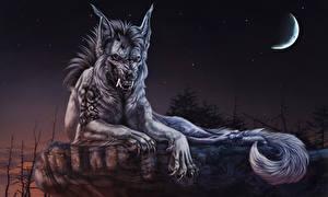 Bilder Werwolf Ungeheuer Halbmond Nacht Grinsen