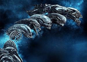 Fotos Alien: Covenant Ungeheuer Film